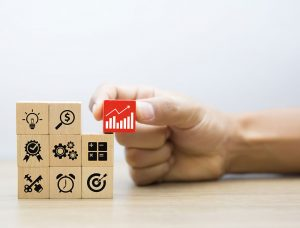 Website Owner Resources